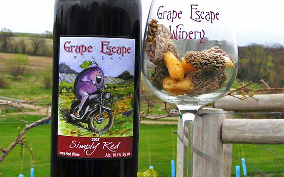 Grape Escape Vineyard & Winery